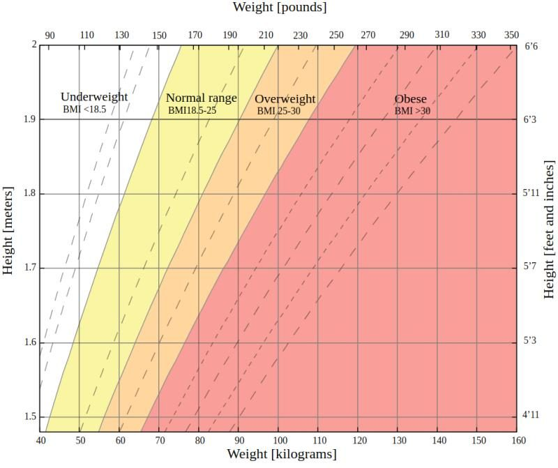Chart showing BMI ranges for women