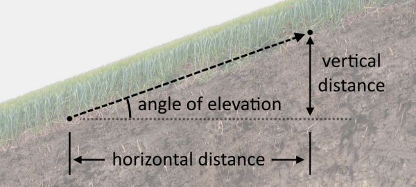 Diagram of a log showing its diameter and length.