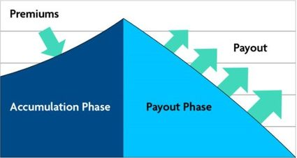 annuity phases