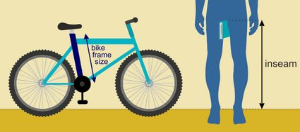 bike size for adults