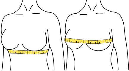 bra size calculator - measurements