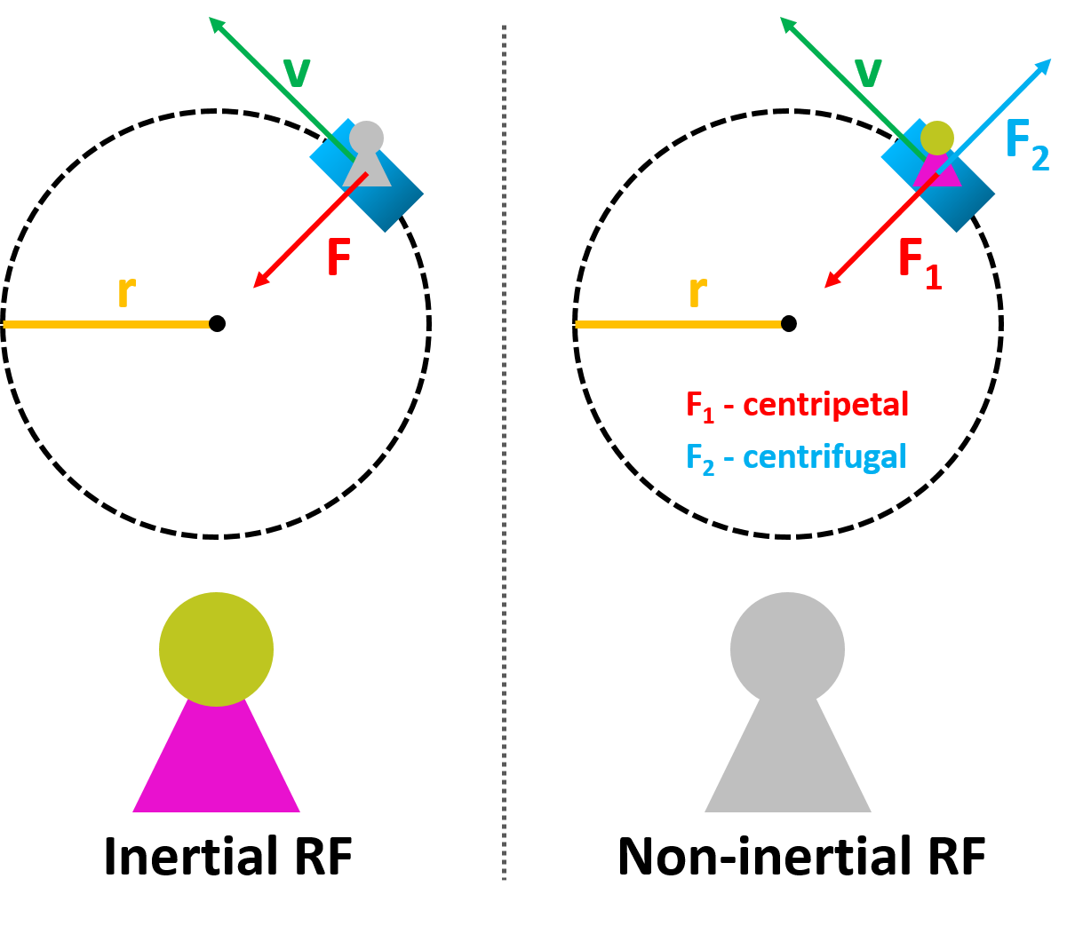 The comparison of inertial and non-inertial reference frames with centripetal and centrifugal forces diagram.