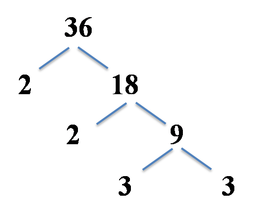 factor tree example, 36 split into 2 and 18, 18 into 2 and 9, 9 into 3 and 3