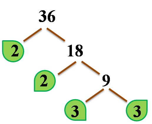 full factor tree with leaves