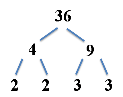 factor tree, alternative split