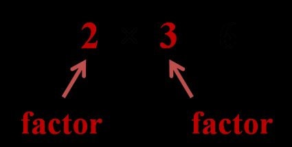 explanation of term factor