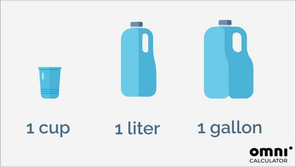 A comparison of 1 cup, 1 liter, and 1 gallon