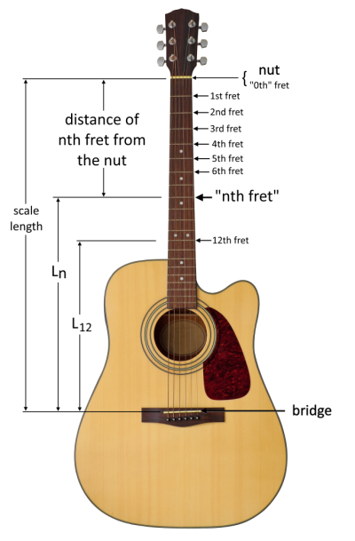 An illustration of a guitar showing scale length, the placements of frets, and the general placement of Lₙ.