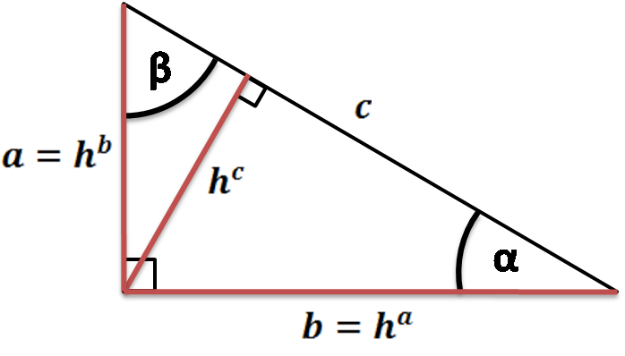 Right triangle with its heights