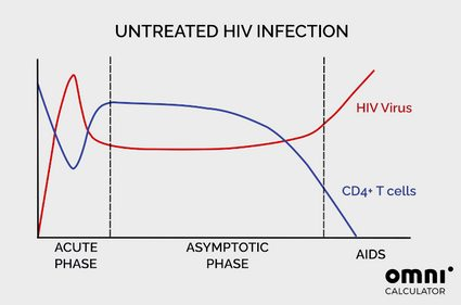 a chart showing how HIV virus and CD4+ lymphocytes vary over time if HIV infection is untreated