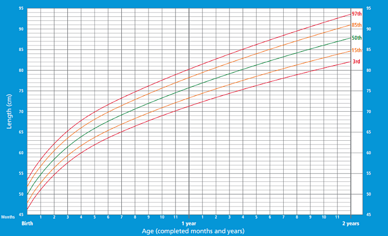 Height/length chart for boys 0-2 years old according to WHO Child Growth Standards