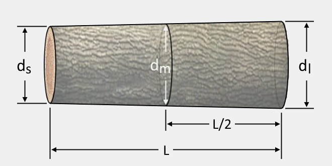 Simple illustration of a log and its dimensions.