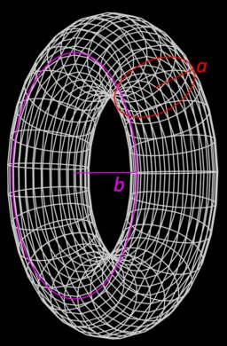 The picture of a torus