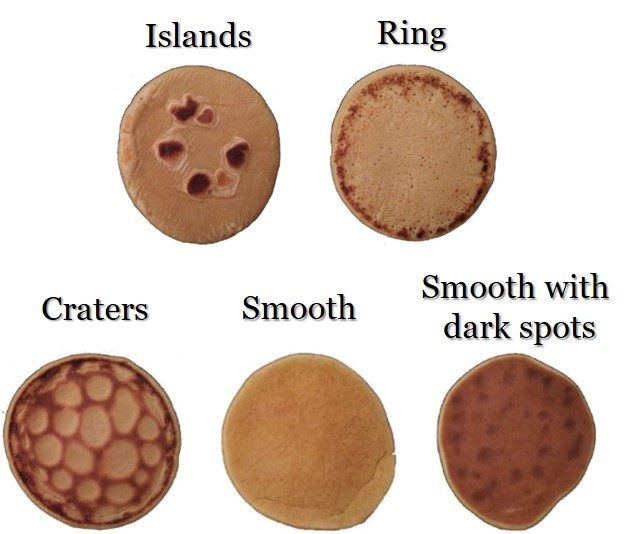 Different pancakes patterns