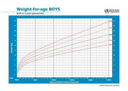 WHO weight for age chart - boys
