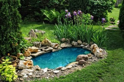 the image of a small garden pond.