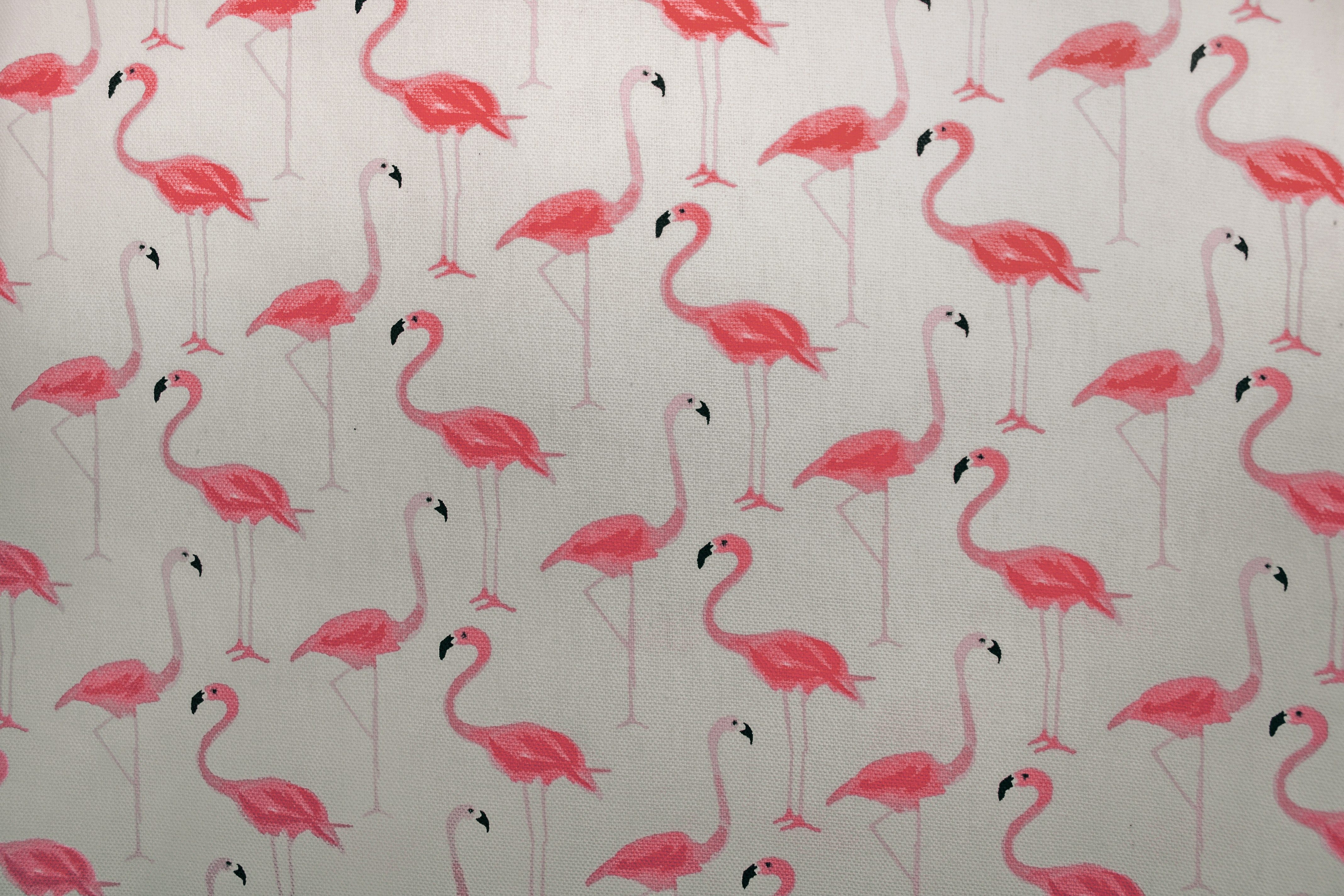 Flamingo fabric pattern