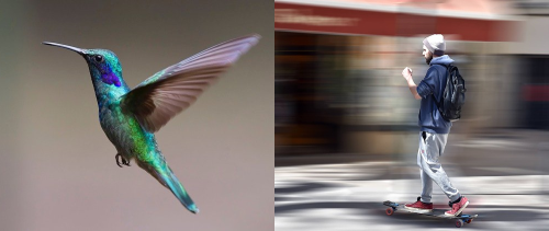 Image of  different creative shots at fast shutter speeds.