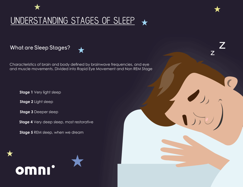 image with definition of sleep stages