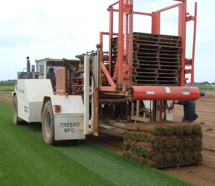 The process of sod harvesting