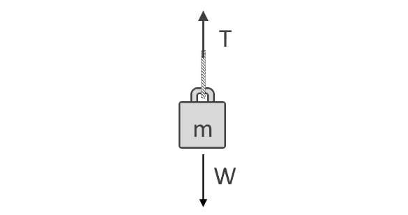 Free-body diagram of an object hanging on a rope